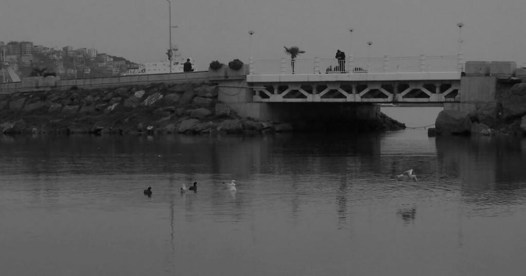 Foto: Can Murat Demir
