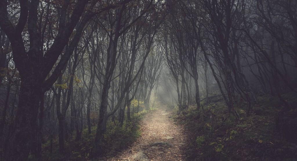 yoculuk-okult-yazi
