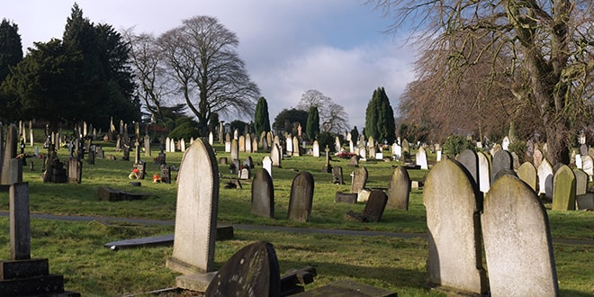 mezarlik-cicek-felsefehayat-min
